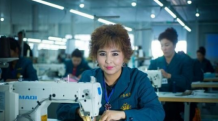 """新疆巴楚渐成丝绸之路经济带上的""""纺织城"""""""
