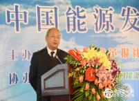 李振国:光伏发电成本五年做到0.33元/kW·h